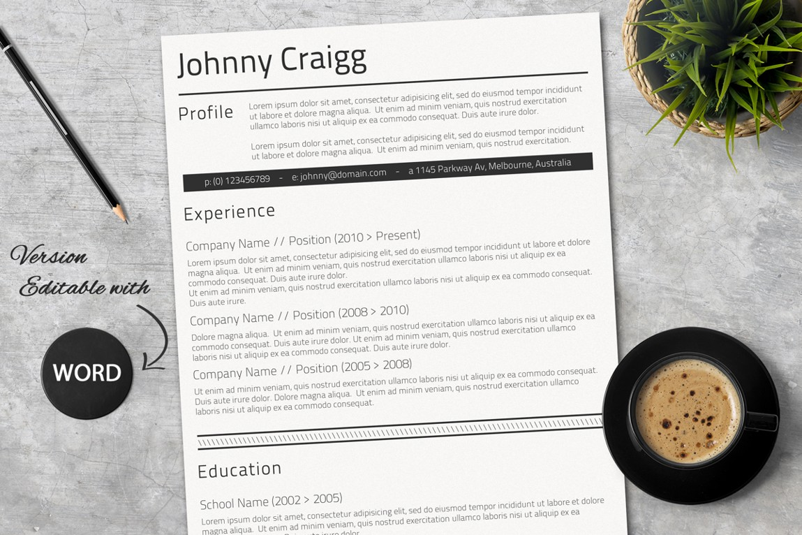 these outstanding resumes have been designed to catch the recruiter 39 s